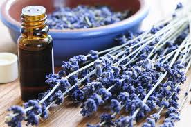 Aromatherapy for Breast Cancer