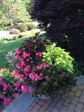 Gardening For Breast Cancer Shade Container