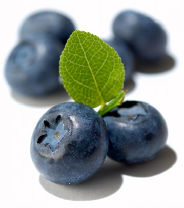 Blueberries To Prevent Breast Cancer