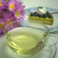 echinacea-tea