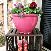 Breast Cancer Gardening For Spring