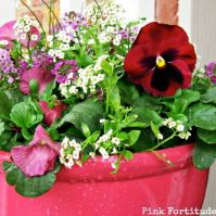 Spring Flowers For Breast Cancer