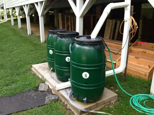 Cancer Free Lawn With Rain Barrels