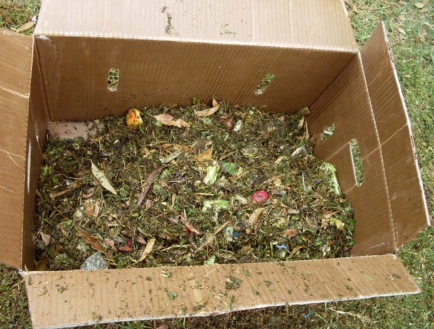 Composting For Breast Cancer Prevention