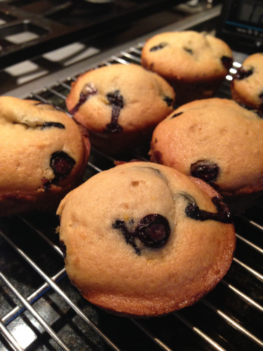 Blueberry Vegan Muffin Recipe For Breast Cancer