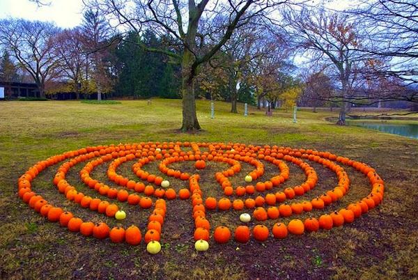 Diy Backyard Breast Cancer Healing Garden Labyrinth Ideas