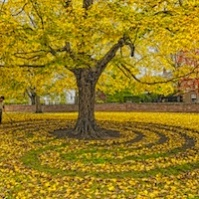Fall Leaves Labyrinth