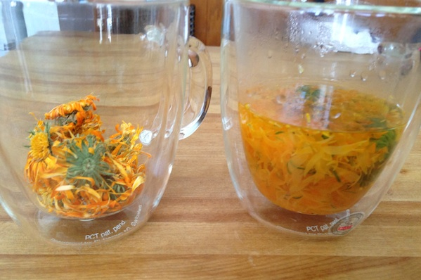 Calendula For Breast Cancer Healing