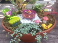 Fairy Dish Garden For Breast Cancer Garden Therapy