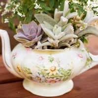 Tea Pot Garden For Breast Cancer Garden Therapy
