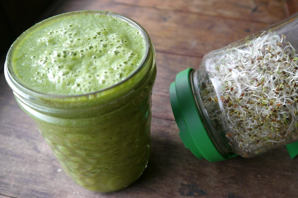 Green Broccoli Sprout Smoothie