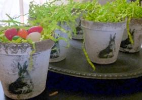 Breast Cancer Authority Healing Garden Flower Pot Ideas For Easter