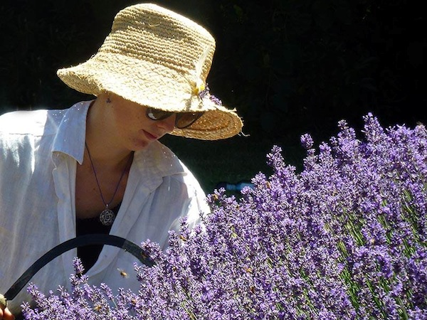 Healing Garden Ideas For The Senses