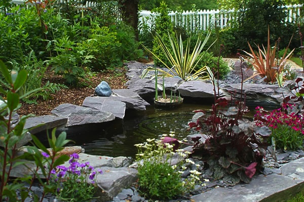 Pond For Breast Cancer Healing Garden