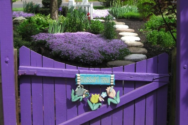 Garden Gate & Color Therapy For Healing