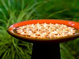 Fire Element Ideas For Breast Cancer Healing Garden