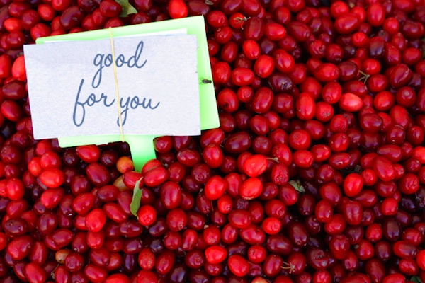 Breast Cancer Authority Blog Cranberries vs. Cancer