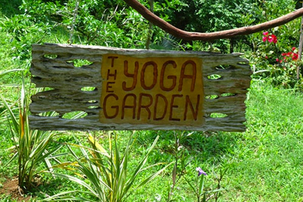 How To Create A Breast Cancer Yoga Garden