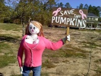 Breast Cancer Authority Garden Scarecrow Ideas