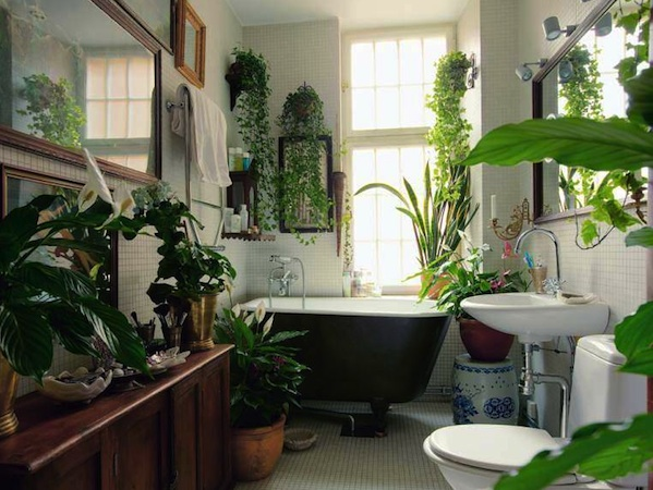 Breast Cancer Bathroom Garden Ideas
