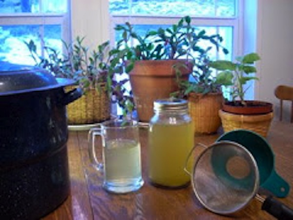 Essiac Tea Recipe