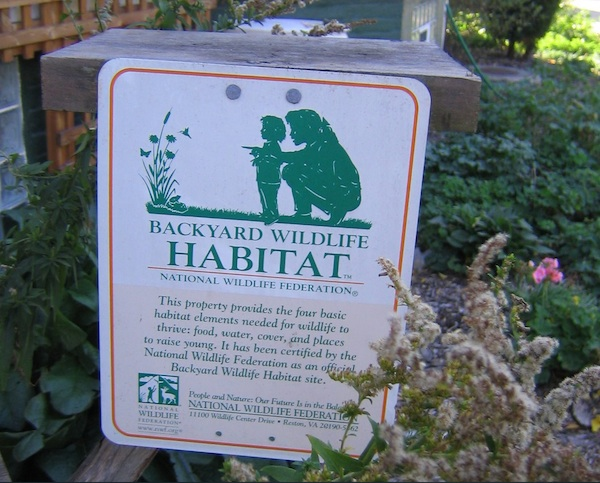 Create a Backyard Wildlife Habitat