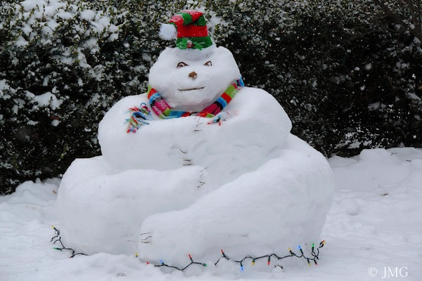 Fat Snowman For Backyard Breast Cancer Healing