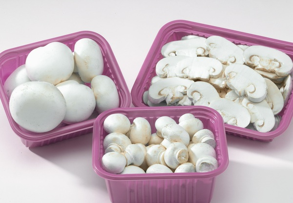 Mushrooms Reduce Breast Cancer Tumors