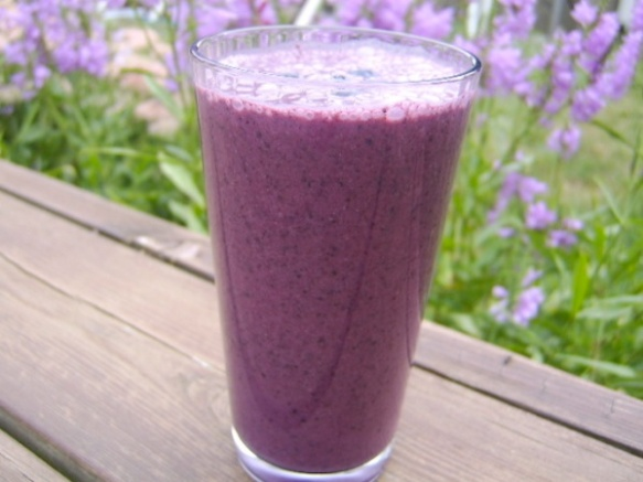 Blueberry-Flax Smoothie | Breast Cancer Authority