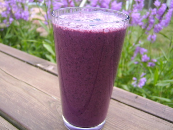 Blueberry-Flax Smoothie Recipe on Breast Cancer Authority Blog