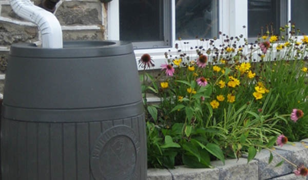 Rain Barrel For A Breast Cancer Healing Garden