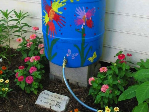 Rainwater is better for your plants