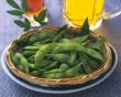 Phytoestrogen (Plant Estrogen) and Beer